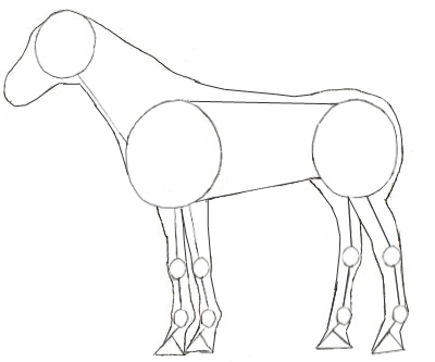how to draw a horse draw step by step