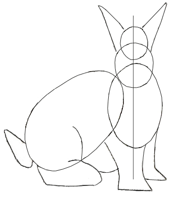 How to draw Rabbit, step 2