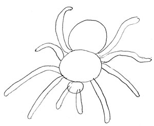How to Draw a Spider, Step 3