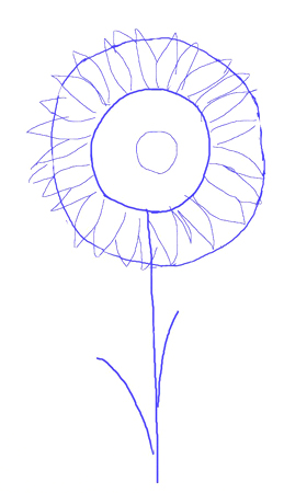 How to draw a sunflower, step 3