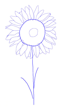 How to draw a sunflower, step 4