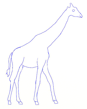 How to Draw a Giraffe, step 4